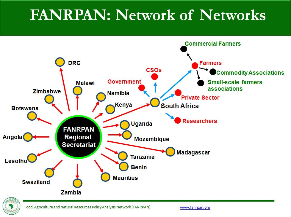 Network of Network